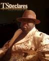 Portrait of TSDeclares