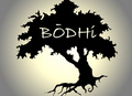 Portrait of Bodhi
