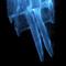Portrait of Frozen Flame