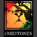 Portrait of The Midtones