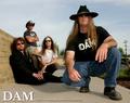 Portrait of DAM MUSIC