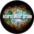 Portrait of interstellar grains