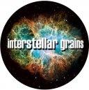 Portrait of interstellar grains