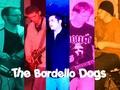 Portrait of The Bordello Dogs