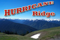 Portrait of Hurricane Ridge