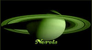 Portrait of Nervis