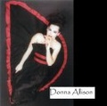 Portrait of The Donna Allison Band