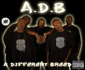 Portrait of ADB CLICK