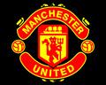 Portrait of Man_United