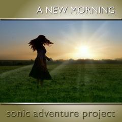 Portrait of Sonic Adventure Project