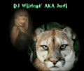 Portrait of DJ Wildcat
