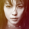 Portrait of BoA USA