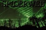 Portrait of SpiderwebMetal