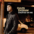 Portrait of Gavin DeGraw