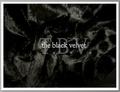 Portrait of The Black Velvet