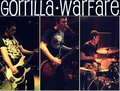 Portrait of Gorrilla Warfare
