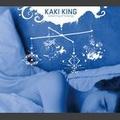 Portrait of Kaki King