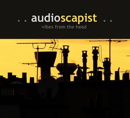 Portrait of audioscapist