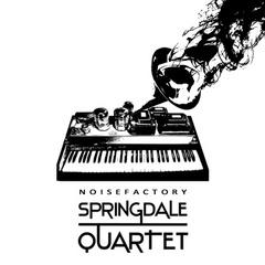 Portrait of Springdale Quartet