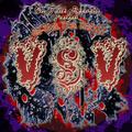 Portrait of VSV