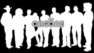 Portrait of Orgone