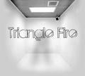Portrait of Triangle Fire