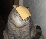 Portrait of cheeseface
